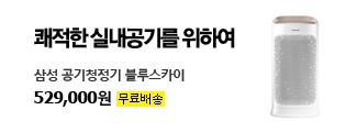 쾌적한 실내공기를 위하여 삼성 공기청정기 블루스카이 536,000원 / 무료배송