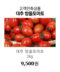 고객만족상품 대추방울토마토 2kg  9,500원