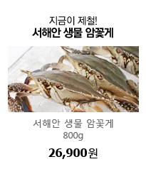 지금이 제철! 서해안 생물 암꽃게 800g 26,900원