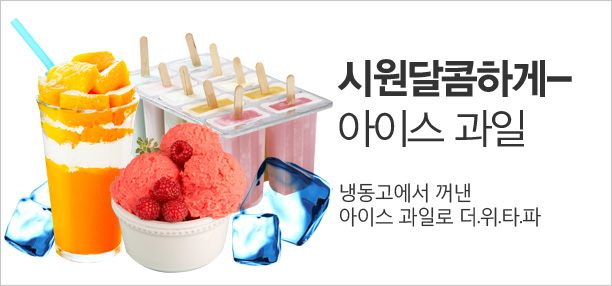 시원달콤 여름을 위한★아이스 과일