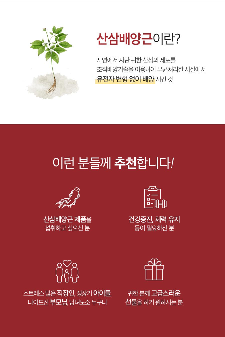 천지인 산삼배양근 보력고 (300g)