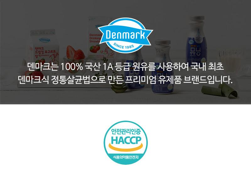 덴마크 브랜드 소개