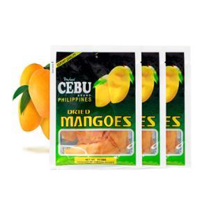 [넛츠앤베리스] 세부 건망고 100g (Cebu Dried Mango)