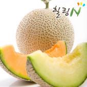 머스크 메론8kg(4~5수)/달콤한 유혹 머스크메론/산지직송