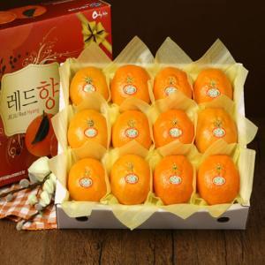 [과일농산]당도선별 제주 레드향 세트 2호  3kg(10~14과)