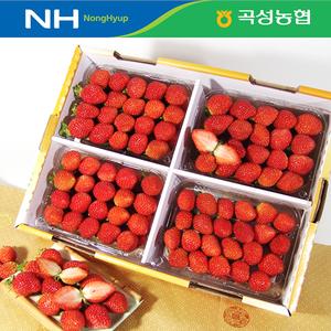 [곡성농협] 하우스 딸기 2kg(특대, 500g*4팩)