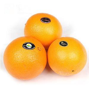 [장보남] 고당도 퓨어스펙 블랙라벨 오렌지 8kg (160g*50과/박스포함)