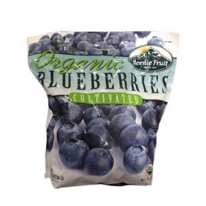 [코스트코 냉장냉동] 유기농 블루베리 1.81g