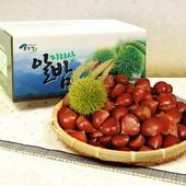 [협성농산] 백운산 알밤 2kg(특대/제수용)