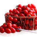 [감동] 대추 방울 토마토 2kg 4-5번과