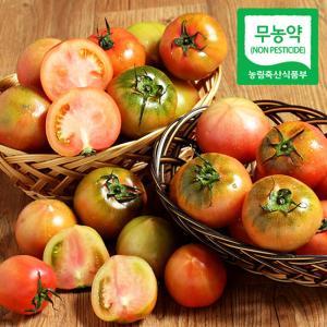 김제훈의 무농약 대저 찰토마토 5kg(특품/2~5번)
