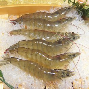 국내산 새우 1kg 28-33미 / 냉동
