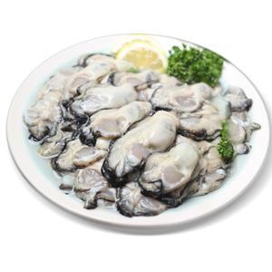 [순천만수산] 생굴 1kg