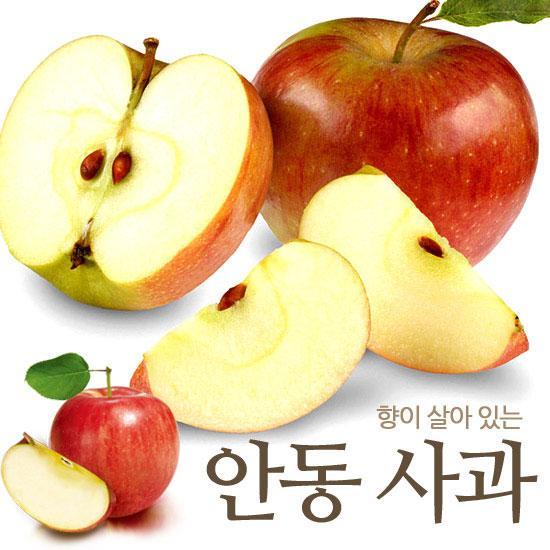 향이 살아 있는 안동 사과 3kg 15과이상