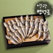 [영광]법성포 알배기 장대5호 1.5kg이상 18~20cm/ 20미