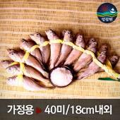 [영광원] 영광원 법성포굴비 가정용 2두름 / 18cm이상 40미