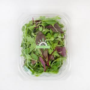 유기농 어린잎 채소믹스