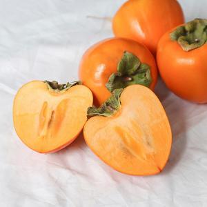 농부마음 전라도 대봉 10kg (47-54과내외)