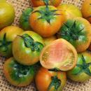 [한마음 농원] 대저토마토 2.5kg