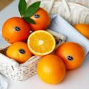 퓨어스펙 오렌지 15과(대과/240g 내외)