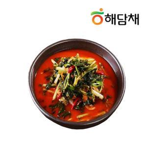 [해담채] 지친 입맛 돋우는 열무물김치5kg