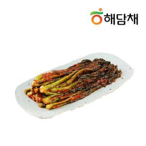 [해담채] 여수 아재가 만든 갓김치1kg