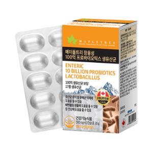 [메이플트리] 100억 프로바이오틱스 생유산균 60캡슐(2개월분)