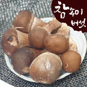 [산지직송] 국내산 참송이버섯 500g (상/못난이 랜덤)