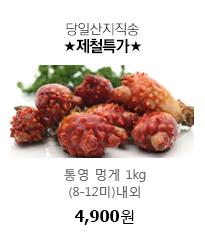 당일산지직송 통영 멍게 1kg(8-12미)내외 4,900원