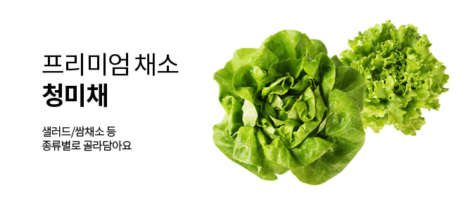 프리미엄 채소 청미채 샐러드/쌈채소 등 종류별로 골라담아요
