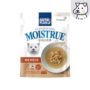 [10%리워드] 뉴트리플랜 모이스트루 황태영양스프 독?60g
