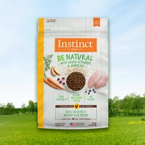 [10%리워드] 네이처스버라이어티 생식본능 BE 내추럴 치킨현미캣 1kg