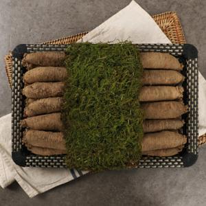 [동횡성농협] 강원도 더덕선물세트_더덕 1kg