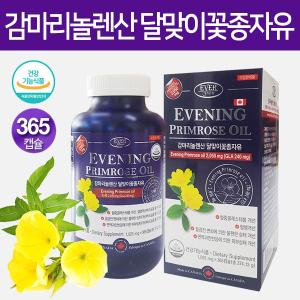 에버그린 감마리놀렌산 달맞이꽃종자유 1병(6개월분)