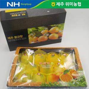 선물세트 제주 위미농협 황금향 3kg(10~15과)